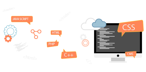 web-developer11